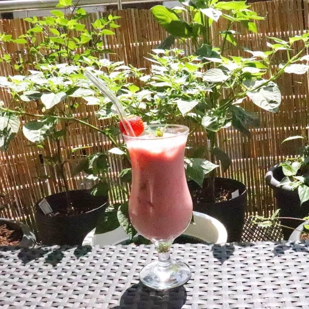 Erdbeer-Birnen-Shake